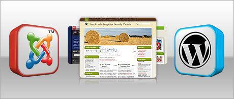 Cost-free website skins